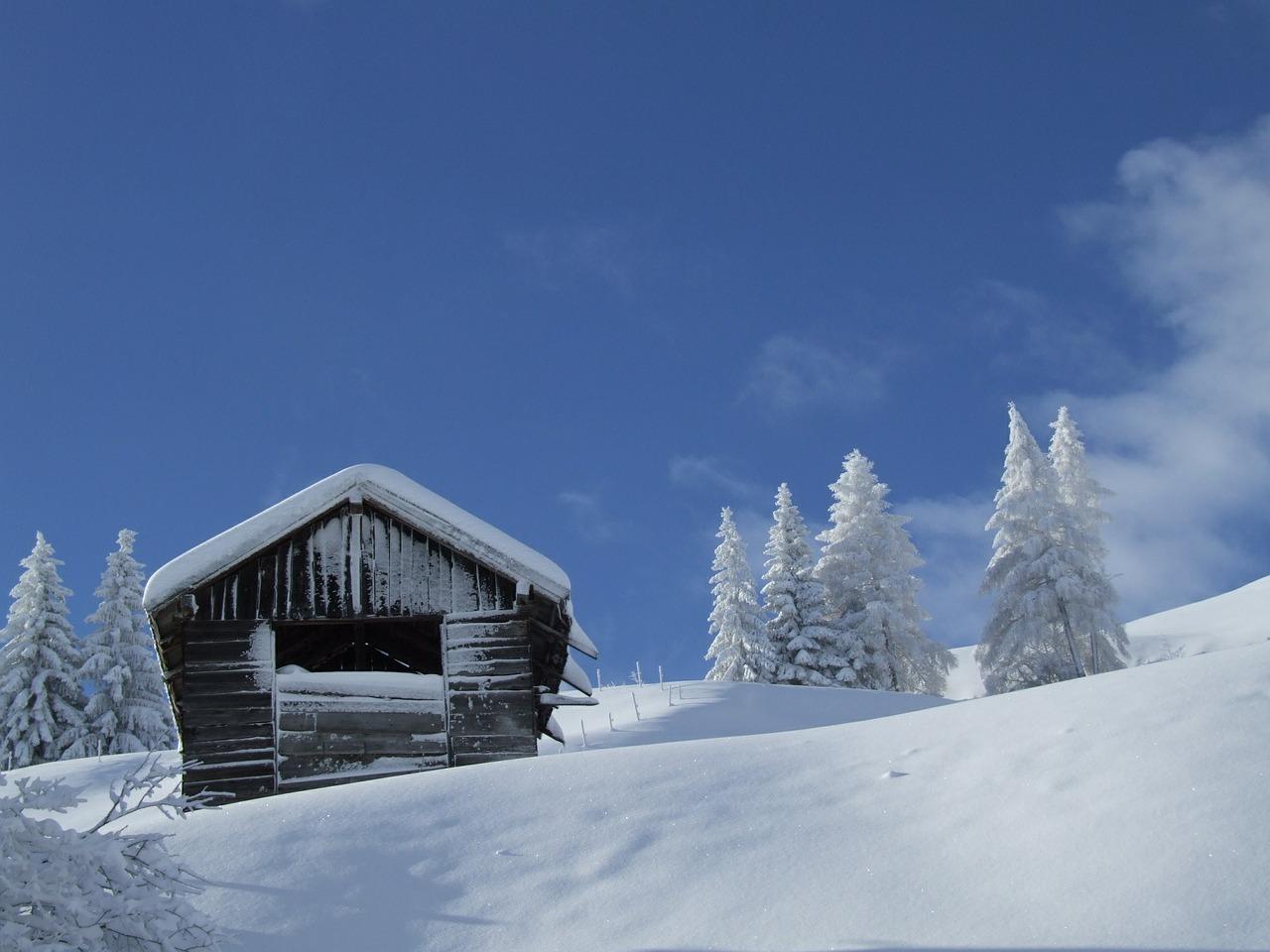 Die Tiroler Langlaufspezialisten