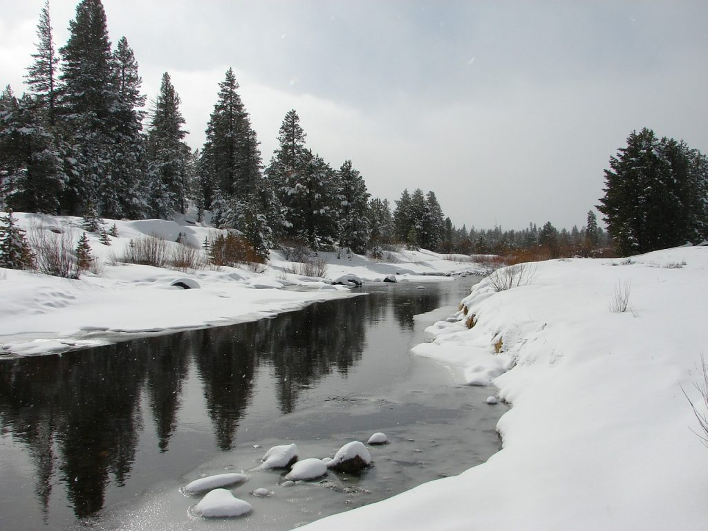 Fischbach Winter